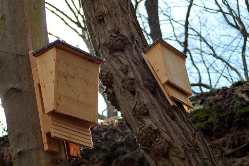 Fledermauskästen und Insektenhotels